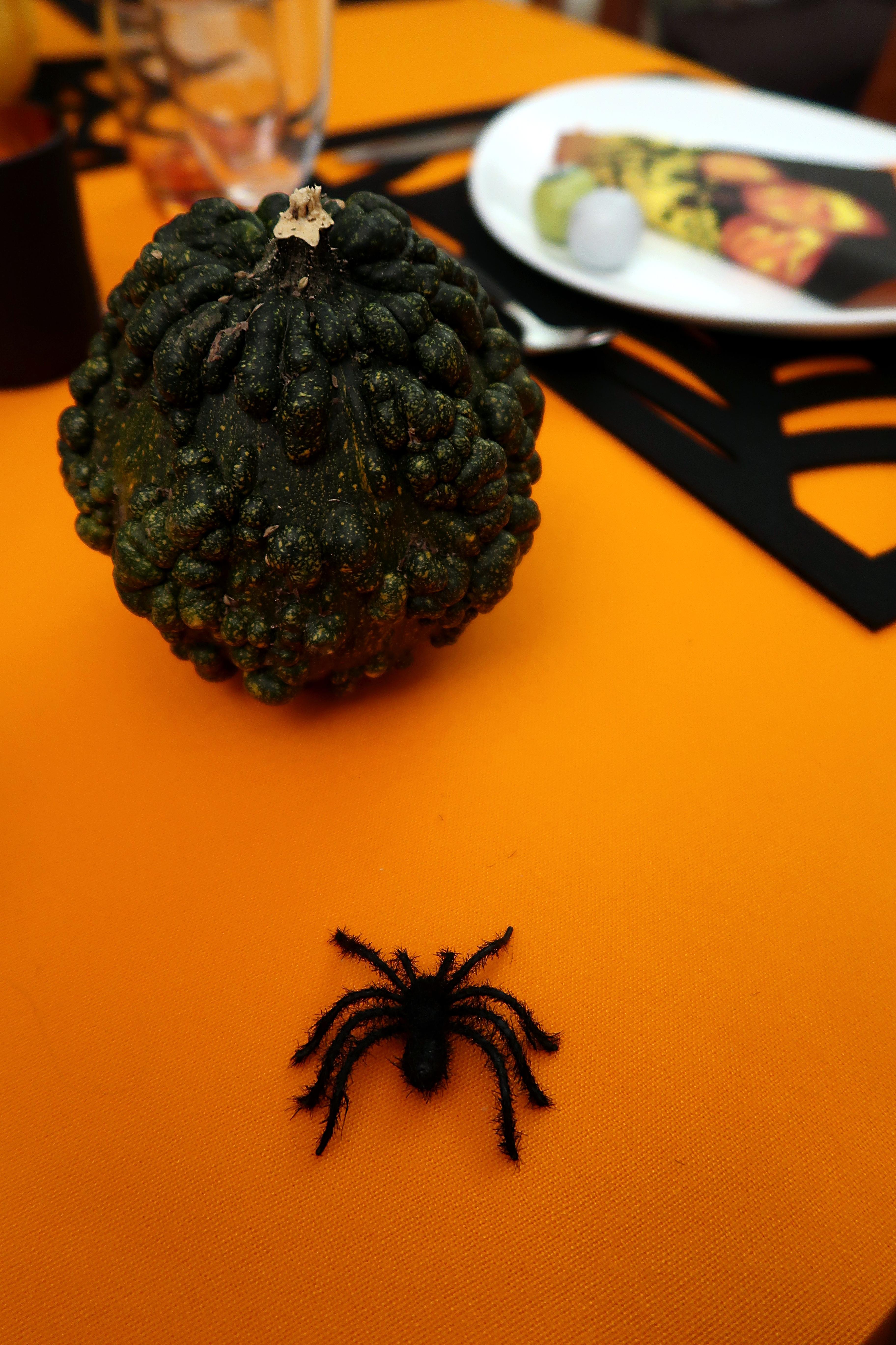 Halloween-18-Araignée-Citrouille_