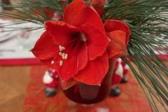 Noel Renne - Bouquet