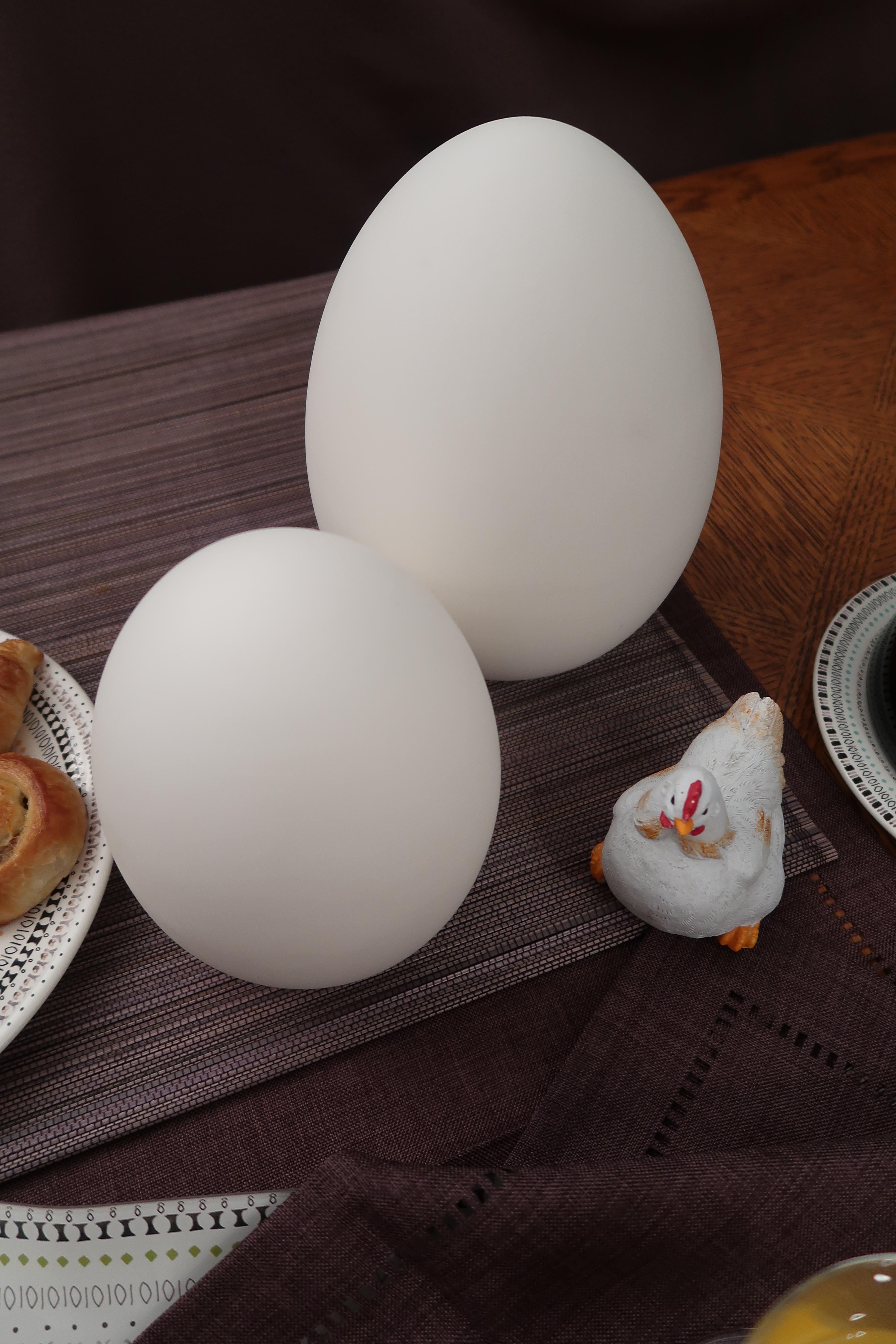 Petit-déjeuner-de-Pâques-Oeufs-et-poule