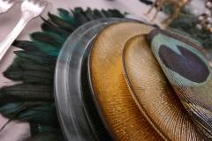 Saint Sylvestre - Détail plumes
